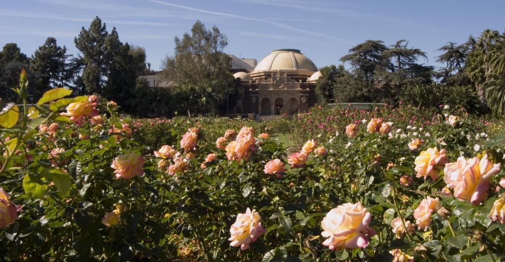 Expo Center Exposition Park Rose Garden City Of Los