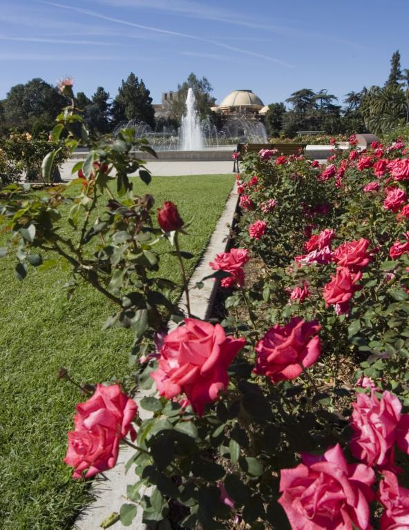 expo center exposition park rose garden