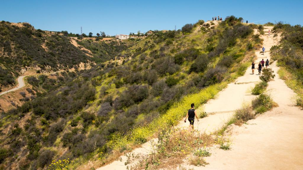 RUNYON CANYON PARK | City of Los Angeles Department of