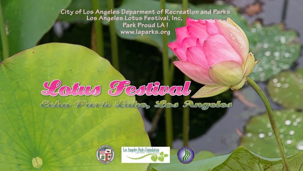Lotus Festival City Of Los Angeles Department Of Recreation And Parks